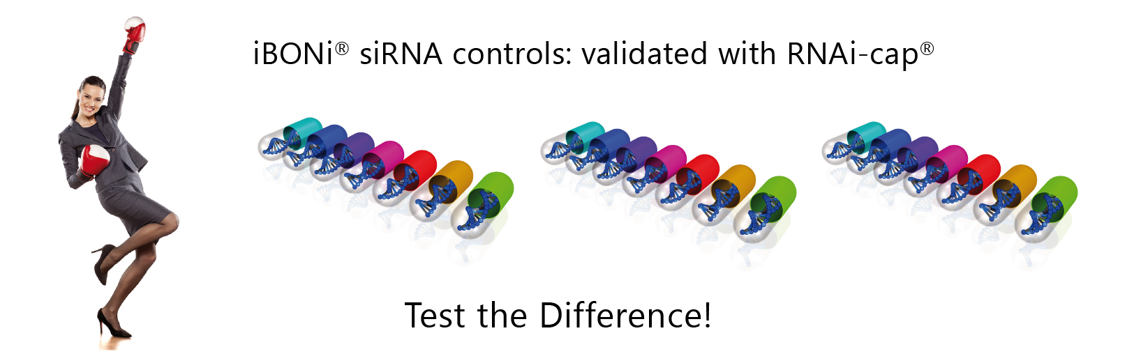 iBONi siRNA controls validated with RNAi-cap