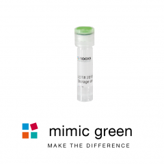 CONmiR mimic green