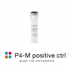 iBONi siRNA positive control-P4M