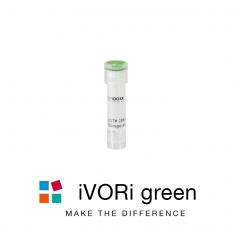 iVORi siRNA green
