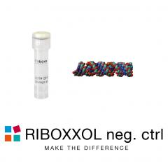 RIBOXXOL negative control