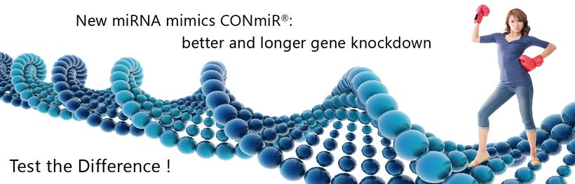 new mirna mimics conmir. better and longer gene knockdown.