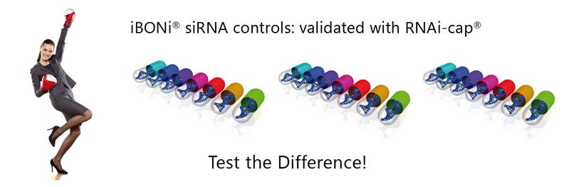 iBONi siRNA controls validated with RNAi-cap