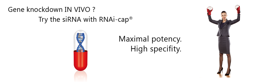 gene knockdown in vivo. try the ivori siRNA with RNAi-cap. Maximal potency. High specificity.